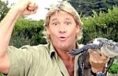 Trajik şekilde hayatını kaybeden Steve Irwin Doodle oldu