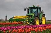 Hollanda tarım ürünleri ihracatında rekor kırdı: 94,5 milyar euro