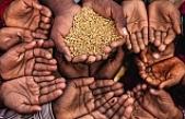 Fiyat artışları gıda güvenliği sorunu getiriyor