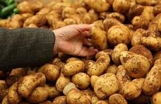 Dolu ve sel taşkınından zarar gören patates alanları askıya alındı