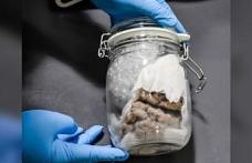 Kanada sınırında 'kavanoz içinde insan beyni' buldu