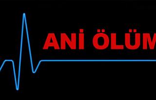75 YAŞINDAKİ SARİYE YÜCEL İKAMETGAHINDA ÖLÜ...