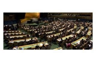 BM'DEN DEMOKRATİK KONGO CUMHURİYETİ İLE İLGİLİ...