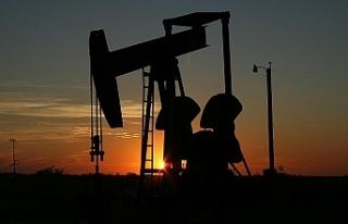 Katar OPEC'ten ayrılıyor