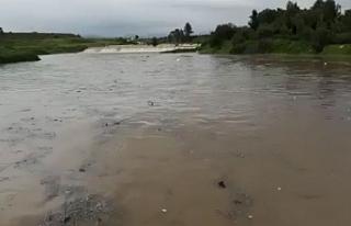 Güzelyurt barajı taştı