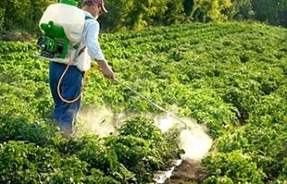 Tarım Bakanlığı'ndan yabani gıda uyarısı