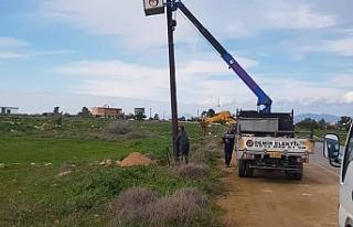 Türkmenköy'de kırsal kesim arazilerine elekrik...