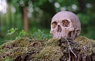 Washington 'ölüyü gübreye dönüştürmeye'...
