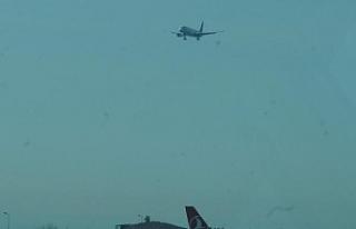 Atatürk Havalimanı'nda piste köpek girdi;...