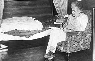 Einstein'ın kaleme aldığı 110 belge ilk kez...