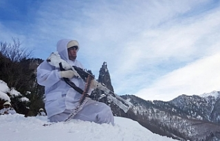 PKK'nın kış üslenmesine dev operasyon