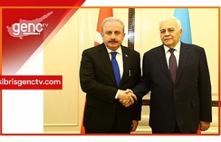 Şentop'tan Azerbaycan'da Kıbrıs mesajı