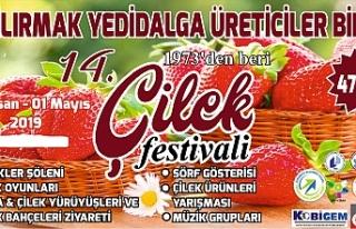 14.'sü yapılacak Çilek Festivali yarın başlıyor