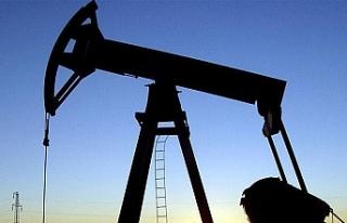 ABD'nin petrol ihracatı geçen yıl yüzde 67...