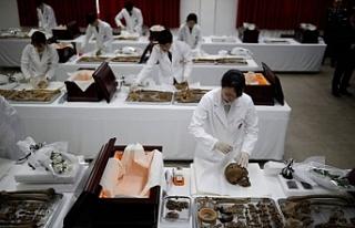Güney Kore savaş kalıntılarının çıkarılması...