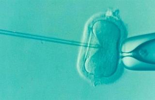 Yunanistan'da üç ebeveynli bebek dünyaya geldi