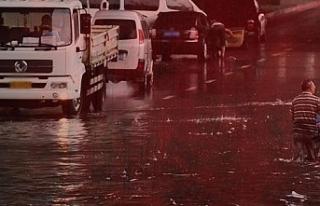 ABD'yi vuran fırtına ve şiddetli yağış...
