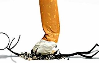 Dünya Tütünsüz Gününde konferans
