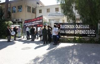 Tel-Sen, Lefkoşa'da 'Davullu zurnalı'...