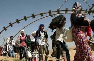Yılda 500-600 düzensiz mülteci sınır dışı...