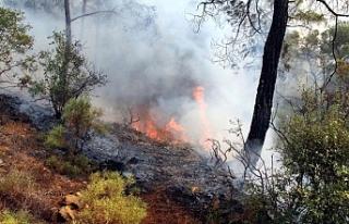 Gönyeli baraj bölgesinde arazi yangını
