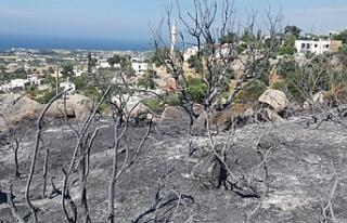 Karşıyaka'da arazi yangını