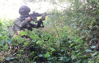 Pençe Harekatı'nda 43 PKK'lı terörist...