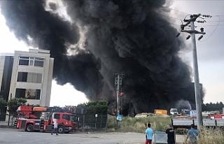 Türkiye'nin Kocaeli ilinde depo ve fabrika yangını:...