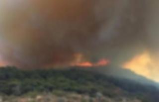 Baf'da yıldırım düşmesi sonucu yangın