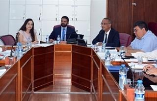 Bütçe Komitesi, Kamu Mali Yönetimi ve Kontrol Yasa...