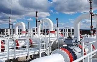 Güneydeki LNG ihalesine 3 şirketten ilgi