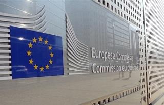 """Komisyondan Güney'e """"Yeşil Hat"""" eleştirisi"""