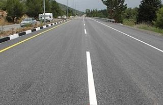 Lefkoşa-Girne ana yolunda orta refüj çevre ve ot...