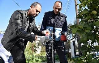 Lefkoşa'da işyerleri denetlendi, şebeke suyu...