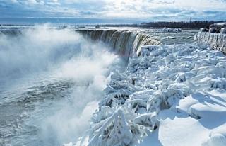 Niagara Şelaleleri'nden düşen kişi kurtuldu