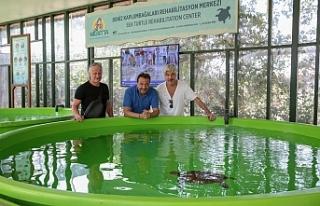 Ünlülerden Deniz Kaplumbağaları Rehabilitasyon...