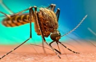 Batı Nil Virüsü ile mücadele için Kanlıdere...