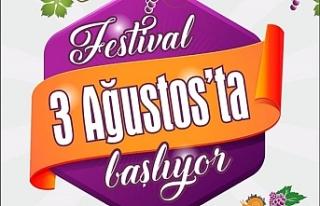Üzüm Festivali başlıyor