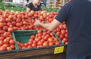 Işık, Tarım ve Ekonomi Bakanlıklarından, domates...