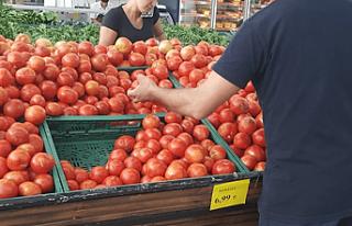 Tarım Dairesi, domates ithaline izin verildiğini...