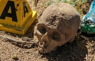 42 kafatas, kemik parçaları ve kavanoz içinde fetüs...