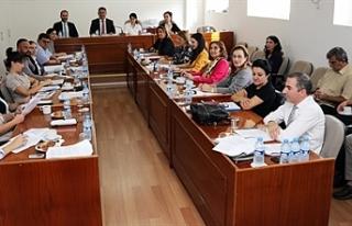 AB Uyum Komitesi toplandı