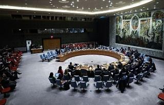 ABD ve Rusya, BMGK'nin Türkiye'yi kınamasına...
