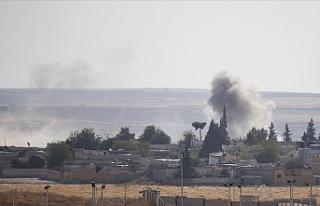 Barış Pınarı Harekatı'nda 42 köy teröristlerden...