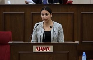 """Baybars: """"Türkiye vatandaşlarına bu tüzük..."""