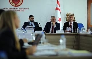 Meclis ve Kamu Hizmeti bütçeleri komiteden geçti