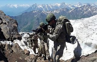 Pençe operasyonlarında bugüne kadar 163 terörist...
