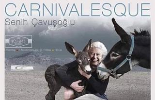 Senih Çavuşoğlu'nun sergisi bugün açılıyor