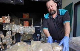 Limasol Limanı'ndan Yola Çıkan 645 Kilo Uyuşturucuyla...