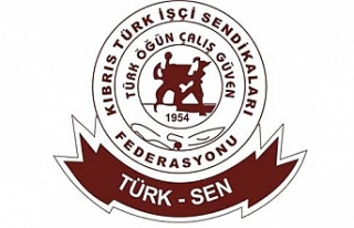 Türk-Sen 65 yaşında